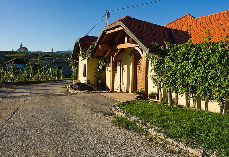 Vina Šturm, Bela Krajina